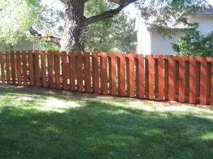 wood fence in boulder, colorado after sealwize treatment